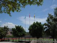 重庆幼儿师范高等专科学校沙河校区历年录取分数线
