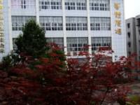 重庆永川幼师职业教育中心有哪些专业