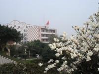 重庆永川幼师职业教育中心招生办联系电话