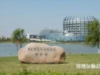 东华大学师范学院松江校区网站网址