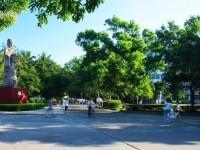 海南大学师范学院海甸校区2020年招生录取分数线