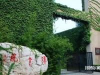 天津大学师范学院北洋园校区招生办联系电话