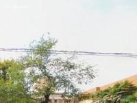 西安职业中等幼师专业学校2018年报名条件、招生对象