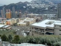 旬阳幼师职业中等专业学校2019年招生计划