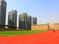 2019年河南大学民生师范学院排名
