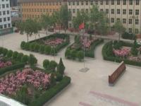 正定幼师职业技术教育中心网站网址