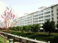 2019年广西大学行健文理师范学院排名