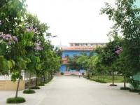 广西现代职业技术师范学院2019年招生录取分数线