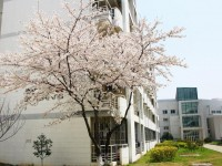 苏州师范大学文正学院2021年招生简章