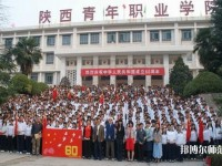 陕西青年职业师范学院含光校区网站网址