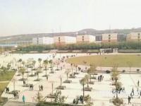 陕西青年职业师范学院灞桥校区网站网址