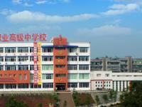 长宁县幼儿师范职业高级中学2021年学费、收费多少