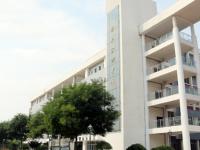 安徽有幼师学校的大专大学
