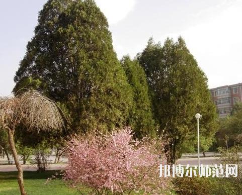 甘肃有幼师学校的大专大学