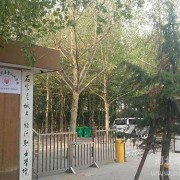 石家庄华师经济管理幼儿师范中等专业学校