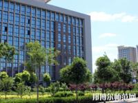 河南2020年幼师学校好点的大专学校
