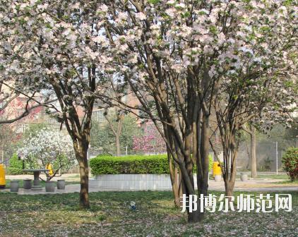郑州2020年哪个学校有幼师学校