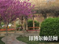郑州2020年幼师学校可以学什么