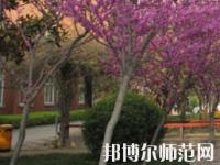 郑州2020年什么幼师学校最有前途