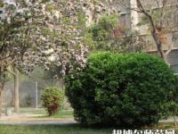 郑州2020年什么幼师学校就业好