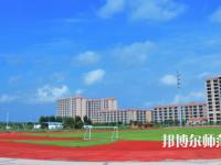 湛江2020年哪些大专学校的幼师学校好