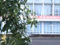 德阳科贸职业学院幼师升学班地址在哪里