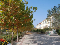 河北省青县幼儿师范学校2020年报名条件、招生要求、招生对象