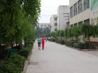 许昌幼儿师范学校网站网址