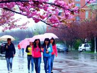 青岛职业技术师范学院2021年招生计划
