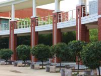 青岛职业技术师范学院2021年招生代码