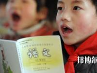 四川2021年小学教育学校干什么的