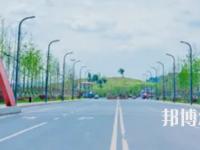 四川2021年读小学教育学校的大专