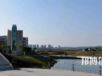 四川2022年比较好的小学教育学校大专学校